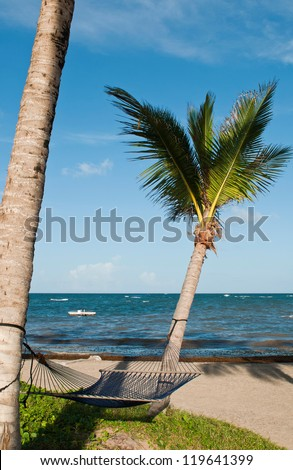 tropical setting with a empty hammock between two palm trees on a beach at Vieux Fort, Saint Lucia