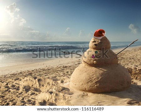 Tropical snowman at the beach