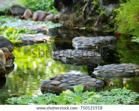 tropical style landscape backyard garden pond with natural river stone green bush plant clear water for relax backdrop background