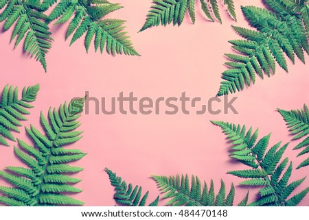 tropical summer background ...