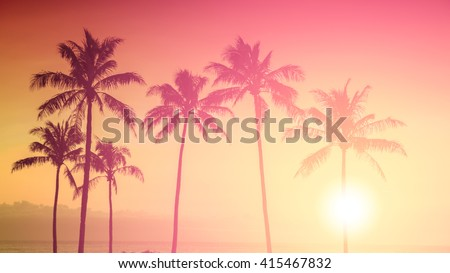 Tropical sunset - Shutterstock ID 415467832