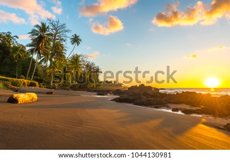 Tropical sunset along the Pacific Coast of Costa Rica with palm tree silhouettes inside Corcovado National Park in the Osa Peninsula, Central America.