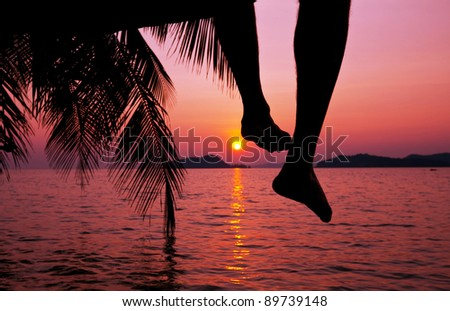 tropical sunset on beach - stock photo
