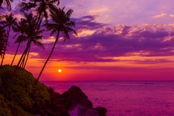 Tropical sunset over the ocean with coconut palm tree silhouettes at tranquil summer beach on island resort