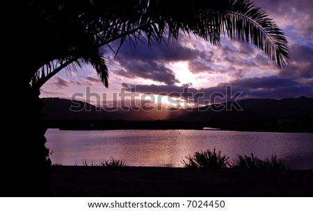 Tropical sunset with palm tree silhouette and mountains