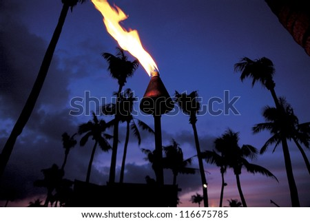 Tropical trees and a flame lighting up at the beach at a sunset