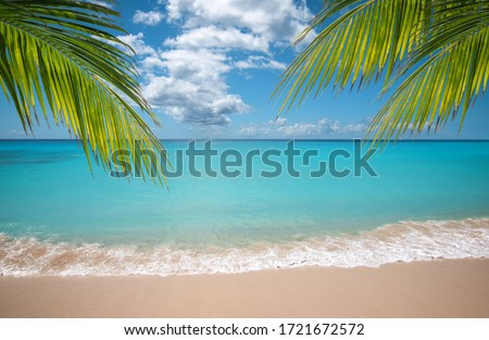 Tropical vacation paradise with white sandy beaches and swaying palm trees.