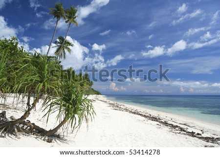 tropical vegetation fringes white sand beach on siquijor island in the philippines