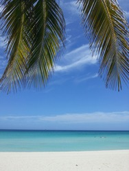 tropical view in the paradise, carribien