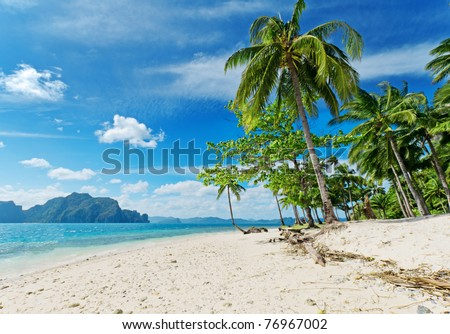 Tropical white sand beach with palm trees.