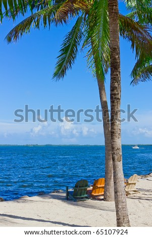 tropical white sand beach with palm trees and beach chairs