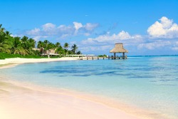 Tropical white sandy beach with palm trees.  Punta Cana, Dominican Republic