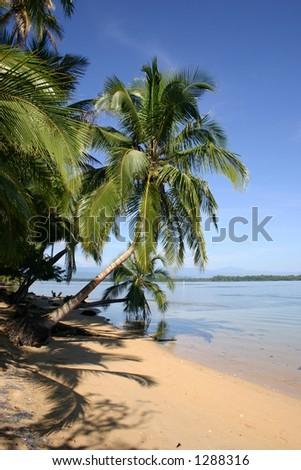 Tropisch Strand - stock photo
