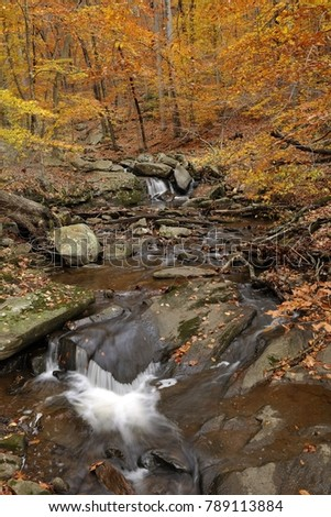 Trout Brook, Hacklebarney State Park, NJ