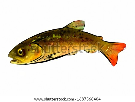 Trout, fish, digital painting, animal, green fish, color illustration, art, nature, food.