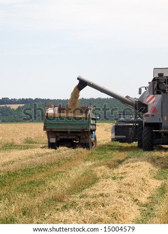 Truck taking the grain from the harvester