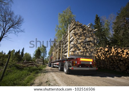 Truck with timber in the forest
