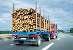 Truck with trailer loaded with tree trunks on german highway