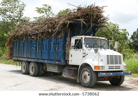 Truckers in Belize transport truck loads of sugarcane to the processing plant - stock photo