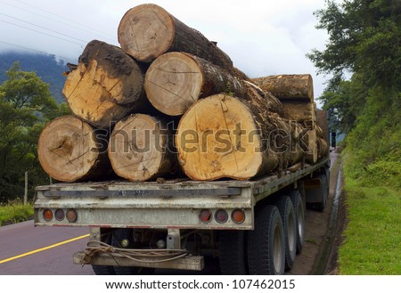 Trucking timber from the Amazon over the Andes in Ecuador