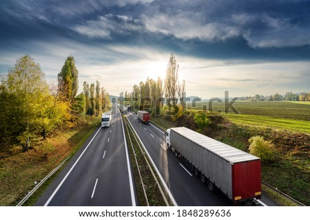Trucks driving on the asphalt highway between the avenue of poplars in autumn rural landscape at sunset