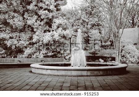 True infrared photo of a botanical water fountain. Modified camera with 720nm cutoff filter. Sepia tone.