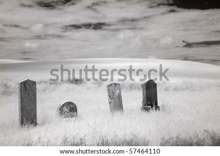 True infrared photograph of four gravestone markers in a cemetery in the Palouse region, Washington state, U.S.A.