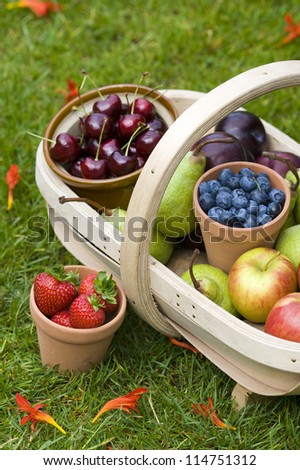 trug of harvested summer fruit including: blueberries, cherries, apples, pears, strawberries, plums