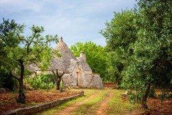 Trulli with olive grove. Val d'Itria - Puglia (Apulia) - Italy