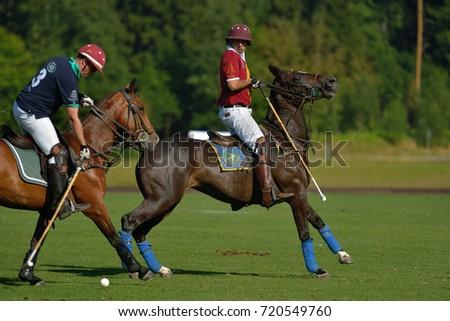 TSELEEVO, MOSCOW REGION, RUSSIA - JULY 26, 2014: Match Tseleevo Polo Club - Oxbridge Polo Team during the British Polo Day. Oxbridge won 5-4 #720549760