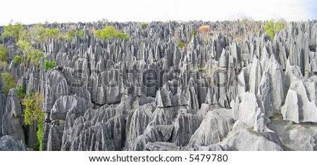 Tsingy peaks forest in Madagascar.