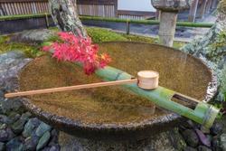 Tsukubai Water Fountain in Japanese Garden in Zuiganzan Enkouji Temple, Kyoto, Japan in autumn. With red maple leaves around the washbasin.
