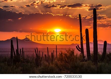 Tucson, Arizona Stockfoto ©