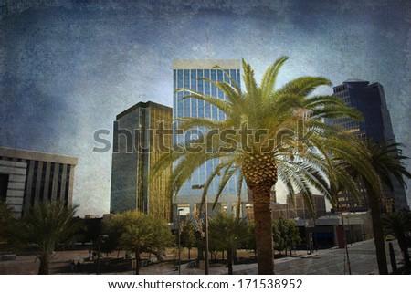Tucson, Arizona downtown through a palm tree