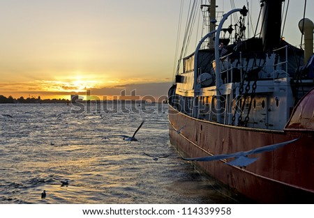 Tugboat moored at sunset in Hamburg harbor and birds flying around.