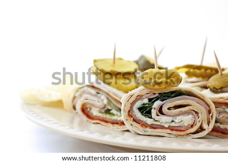 Tukey wrap lavash on a plate with white background
