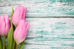 Tulip on the wooden background.