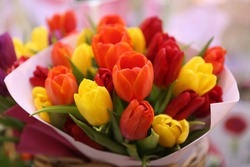 Tulip, tulips bouquet. Present for March 8, International Women's Day. Holiday decor with flowers. Bouquet with colorful tulips. Red tulip, yellow tulip. Holiday floral decor. Spring tulips, bouquet