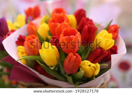 Tulip, tulips bouquet. Present for March 8, International Women's Day. Holiday decor with flowers. Bouquet with colorful tulips. Red tulip, yellow tulip. Holiday floral decor. Spring tulips, bouquet Stock photo ©