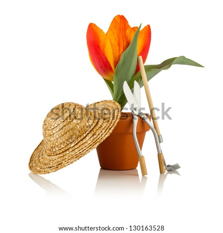 tulip with straw hat and garden tools