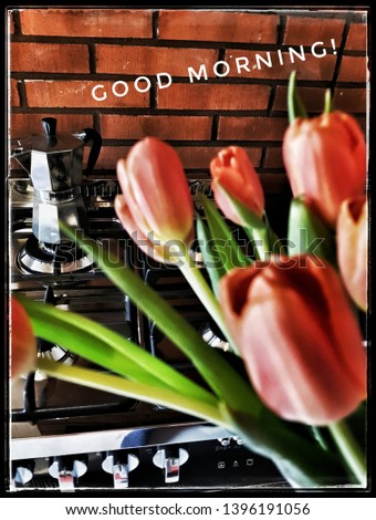 Tulips and coffee pan behind. Brick wall and warm atmosphere. Good morning.