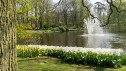 Tulips at the border of a pond with fountain in Dutch public Spring flower Garden Keukenhof Lisse, Zuid Holland, NLD