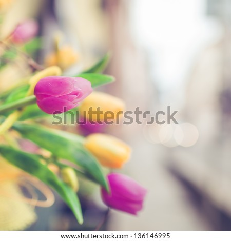 Tulips for Sale at Street Market in Paris