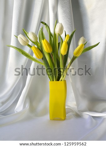 Tulips in a vase on a white background