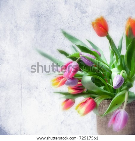 tulips in basket
