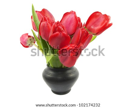 tulips in vase on a white background