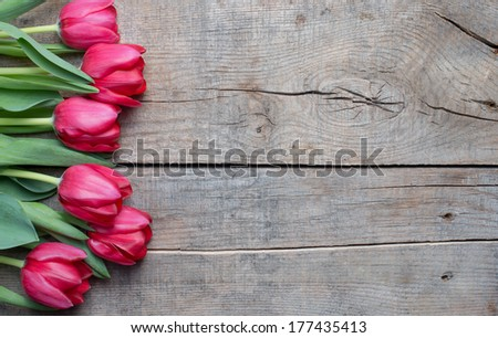 Tulips on an antique wooden background