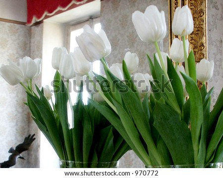 Tulips with white reflection - Bouquet of white tulips reflecting in a mirror with a bronze bird in the background.