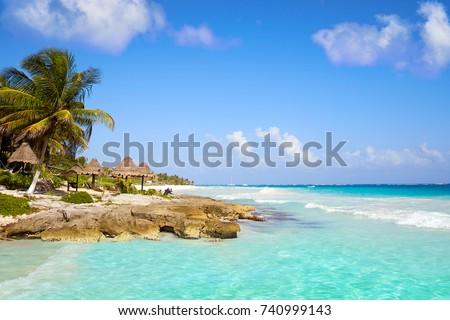 Tulum Caribbean turquoise beach in Riviera Maya of Mayan Mexico #740999143