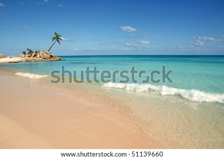tulum mayan riviera tropical beach palm trees turquoise caribbean sea [Photo Illustration]